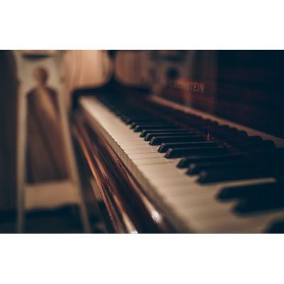 Digital Piano & Keyboard